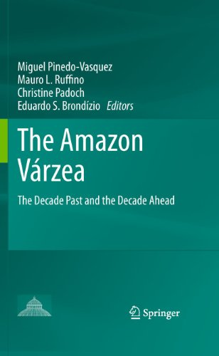 9789400701458: The Amazon Várzea: The Decade Past and the Decade Ahead