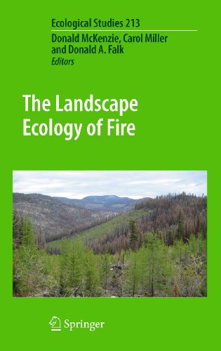 9789400703001: The Landscape Ecology of Fire