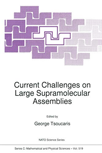 Current Challenges on Large Supramolecular Assemblies Nato Science Series C