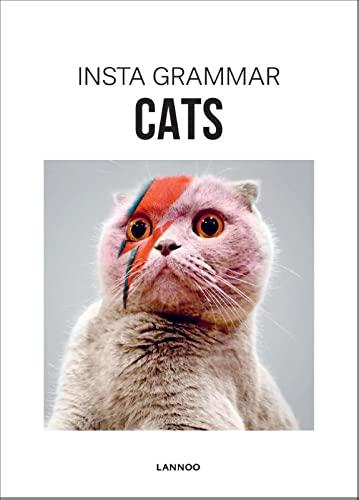 9789401436953: Insta Grammar: Cats