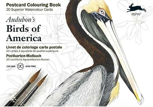 9789460096280: Audubon's Birds of America: Postcard Colouring Book