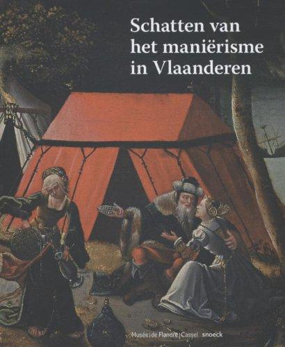 9789461610997: Schatten van het manierisme in Vlaanderen / druk 1