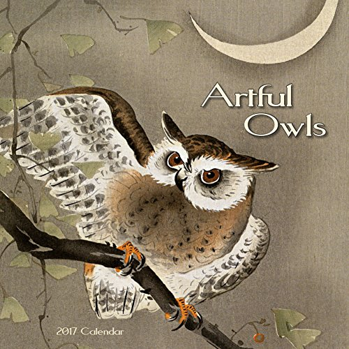 9789462236493: Artful Owls (CL54290)