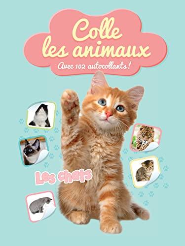 9789462449015: Les chats : Avec 102 autocollants !