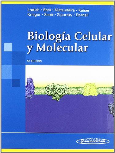 Biologia Celular y Molecular (Spanish Edition): Lodish, Harvey, Berk,