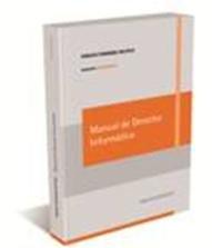 9789502025933: Manual de derecho informático (papel + e book)