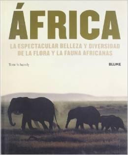 9789502315065: La Discriminacion En Argentina (Derechos Humanos) (Spanish Edition)