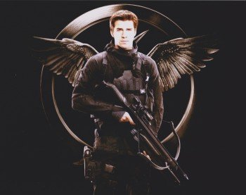 9789505054954: The Hunger Games Liam Hemsworth 10 Inch By 8 Inch Picture