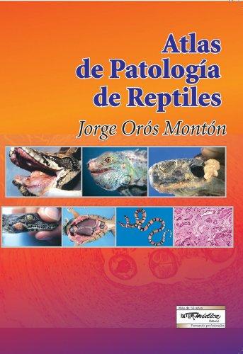 9789505551040: ATLAS DE PATOLOGIA DE REPTILES