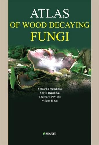 9789546424686: Atlas of Wood Decaying Fungi