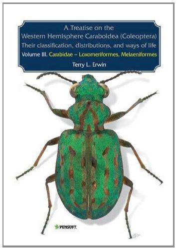 9789546426024: A Treatise on the Western Hemisphere Caraboidea (Coleoptera): Thier Classification, Distributions, and Ways of Life: (Carabidae-Loxomeriformes-Melaeniformes) (Pensoft Series Faunistica)