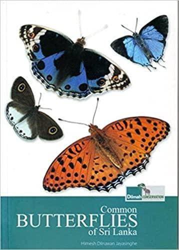 9789550081134: Common Butterflies of Sri Lanka
