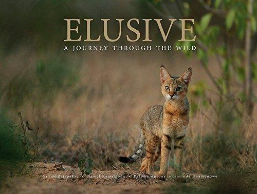 9789551115012: ELUSIVE: a Journey through the wild