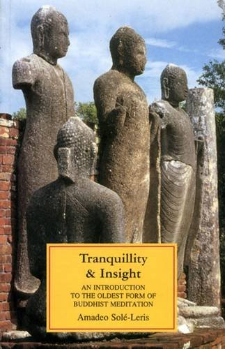 9789552401015: Tranquillity and Insight : An Introduction to the Oldest Form of Buddhist Meditation