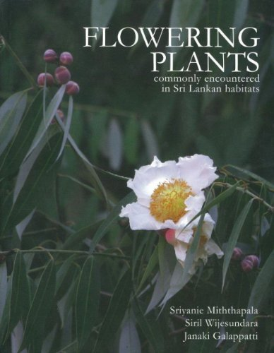 9789559937814: Flowering Plants : Commonly Encountered in Sri Lankan Habitats