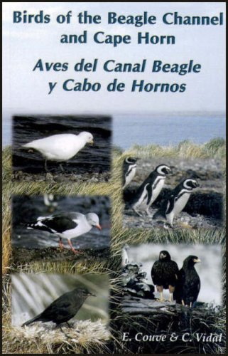 9789568007010: Birds of the Beagle Channel and Cape Horn