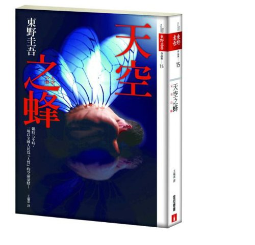 9789573329695: Sky Bee (Traditional Chinese Edition)