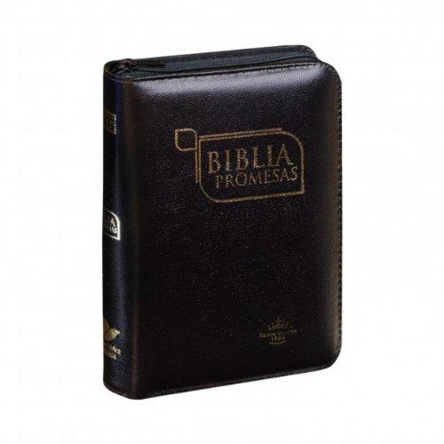 9789587450620: RVR1960 Promise Bible (Spanish Edition)