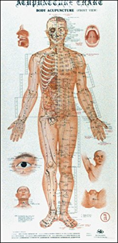 9789622050013: Acupuncture Charts