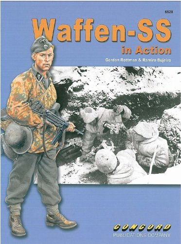 9789623611572: Foreign Legions of the Waffen SS 6528