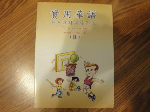 Practical Chinese Workbooks III (A and B) (Workbook III): Chang qing zhong wen