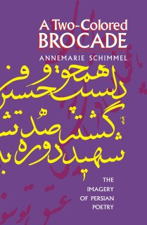 9789653797963: A Two-Colored Brocade