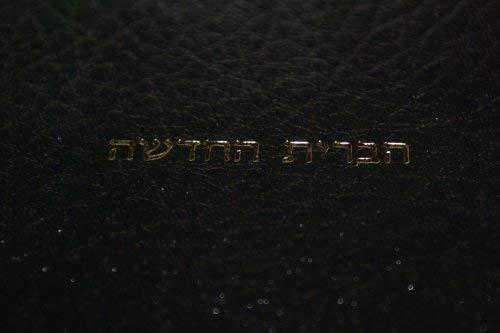 9789654310116: Modern Hebrew New Testament