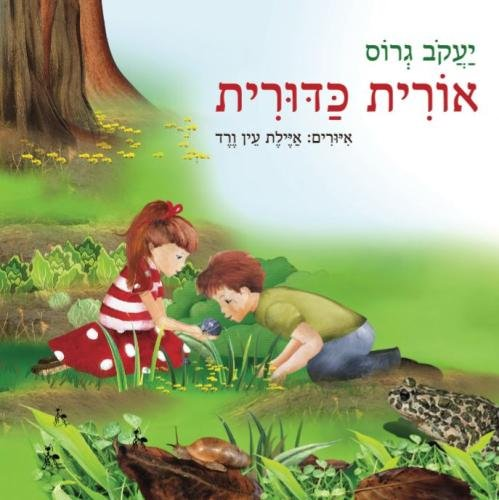 9789655504095: orit kadurit (Hebrew Edition)