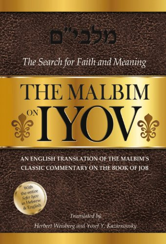 The Malbim on Iyov; The Search for Faith and Meaning; An English Translation of the Malbim's ...