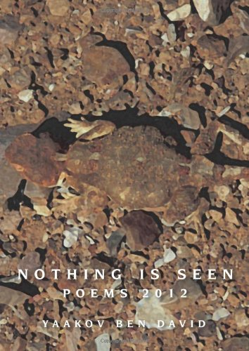 9789657623039: Nothing is Seen