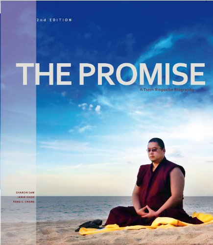 The Promise - A Tsem Rinpoche Biography