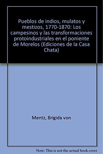Pueblos de indios, mulatos y mestizos. 1770-1870: Mentz, Brigida von