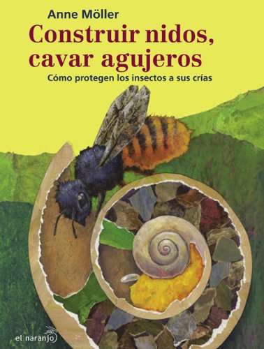 9789685389365: Construir nidos, cavar agujeros/ Building Nests, Digging Holes: Como protegen los insectos a sus crias/ How Insects Protect Their Young (Bicherio) (Spanish Edition)