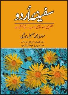 9789693513189: Safeena Urdu