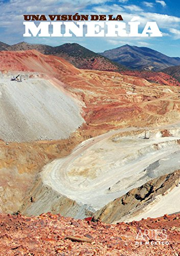 Una visión de la minería: Brading, David A.