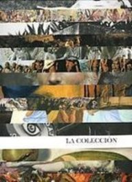 9789707772571: La Coleccion Del Instituto Nacional De Bellas Artes / The Collection of the National Institute of Fine Arts (Artes Visuales) (Spanish Edition)