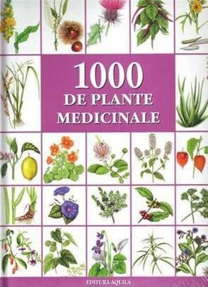 9789737143037: 1000 DE PLANTE MEDICINALE