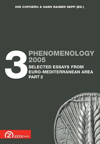 9789738863347: Phenomenology 2005, Vol. 3, Selected Essays from Euro-Mediterranean Area, Part 2 (Postscriptum OPO) (English, Spanish and French Edition)