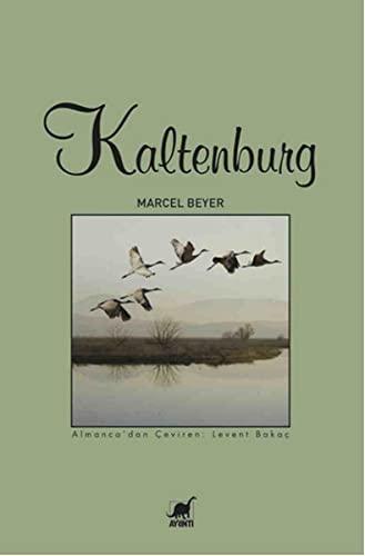 9789755399478: Kaltenburg