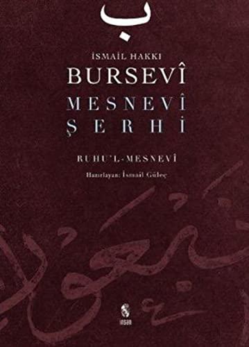 9789755744162: Mesnevi Serhi