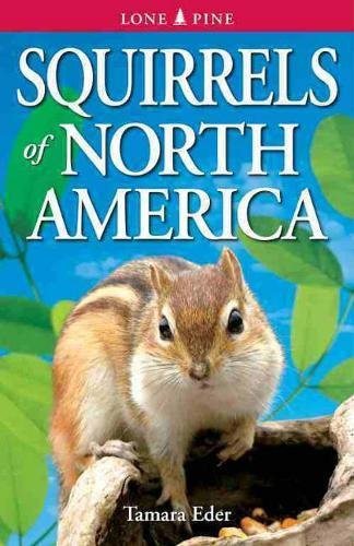 9789768200457: Squirrels of North America