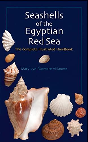 9789774160967: Seashells of the Egyptian Red Sea: The Illustrated Handbook