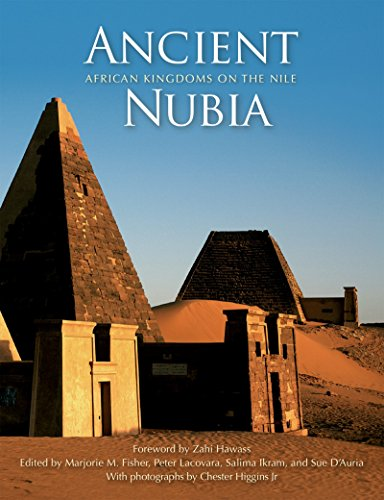 9789774164781: Ancient Nubia: African Kingdoms on the Nile