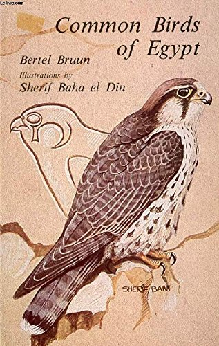 COMMON BIRDS OF EGYPT (P) (9774240626) by Bertel Bruun