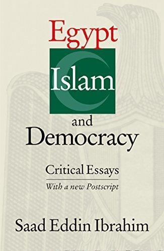 9789774246647: Egypt, Islam, and Democracy: Critical Essays