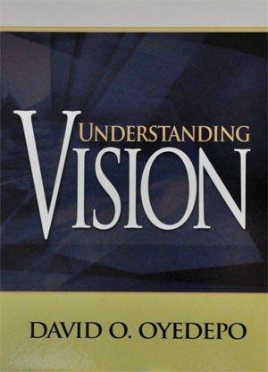 9789782480170: Understanding Vision