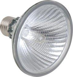 9789792140507: Sylvania-Ampoule Halog�ne Spot Projecteur PaR 30 ES 75 W