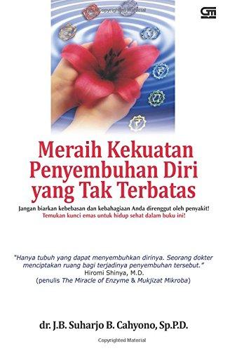 9789792270730: Meraih Kekuatan Penyembuhan Diri yang Tak Terbatas (Indonesian Edition)