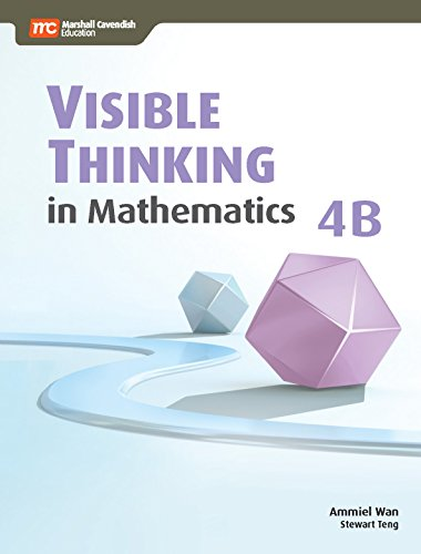 9789810115258: Visible Thinking in Mathematics, 4B