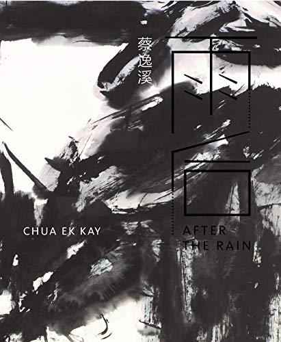 9789810973537: Chua Ek Kay: After the Rain